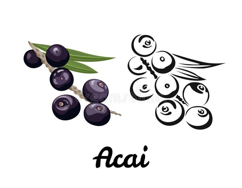 Ícone de Acai ilustração do olor da baga madura com uma folha e um preto verdes ilustração stock