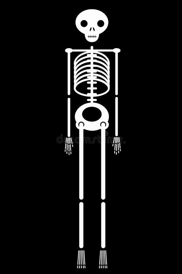 Ícone de esqueleto humano branco isolado no vetor preto do fundo fotos de stock
