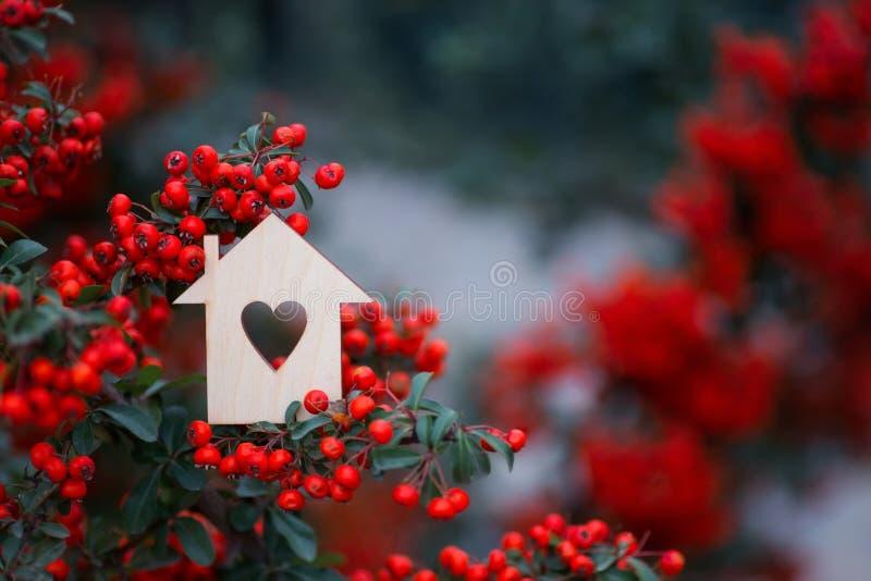 Ícone de madeira da casa com furo no formulário do coração cercado por bagas de Rowan vermelhas fotos de stock royalty free