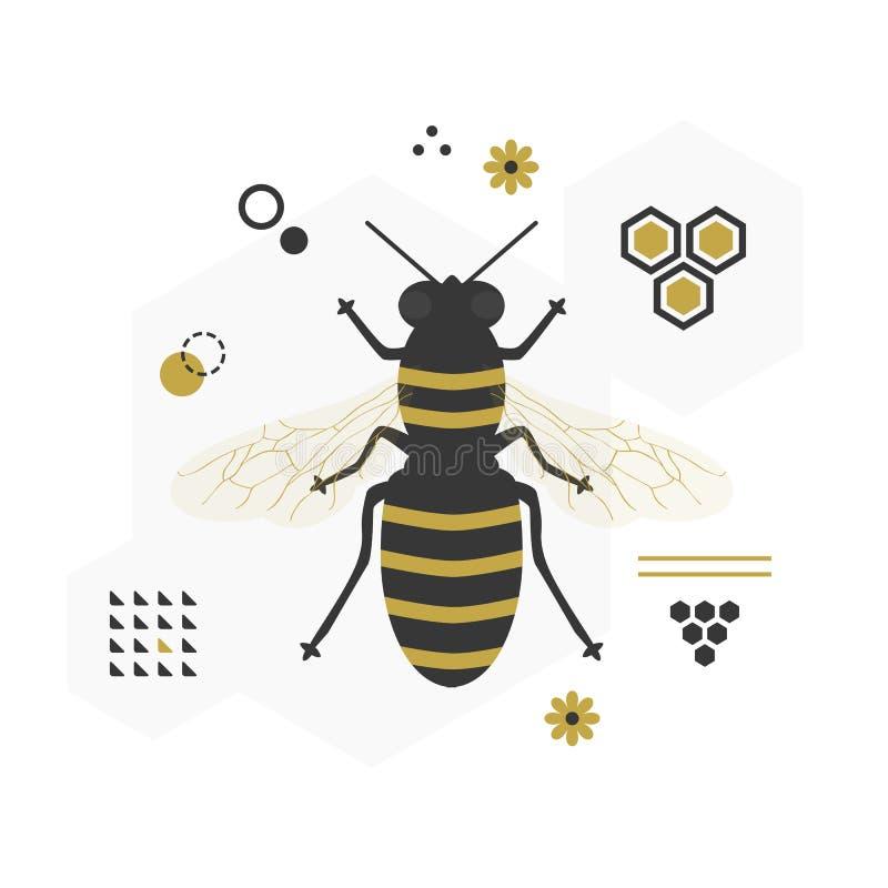 Ícone de voo preto e dourado da abelha do mel da vista superior com sinais e símbolos ilustração royalty free