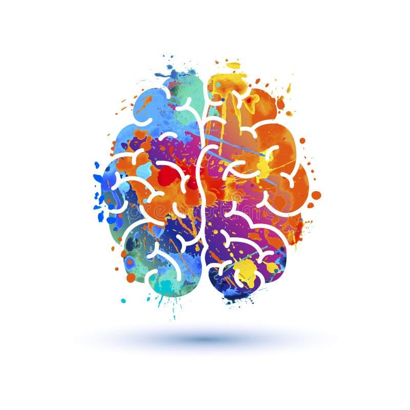 Ícone do cérebro humano Pintura do respingo ilustração stock