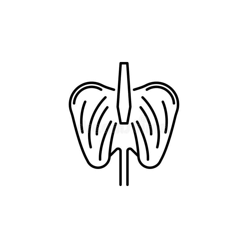 Ícone do esboço do diafragma do órgão humano Os sinais e os símbolos podem ser usados para a Web, logotipo, app móvel, UI, UX ilustração do vetor