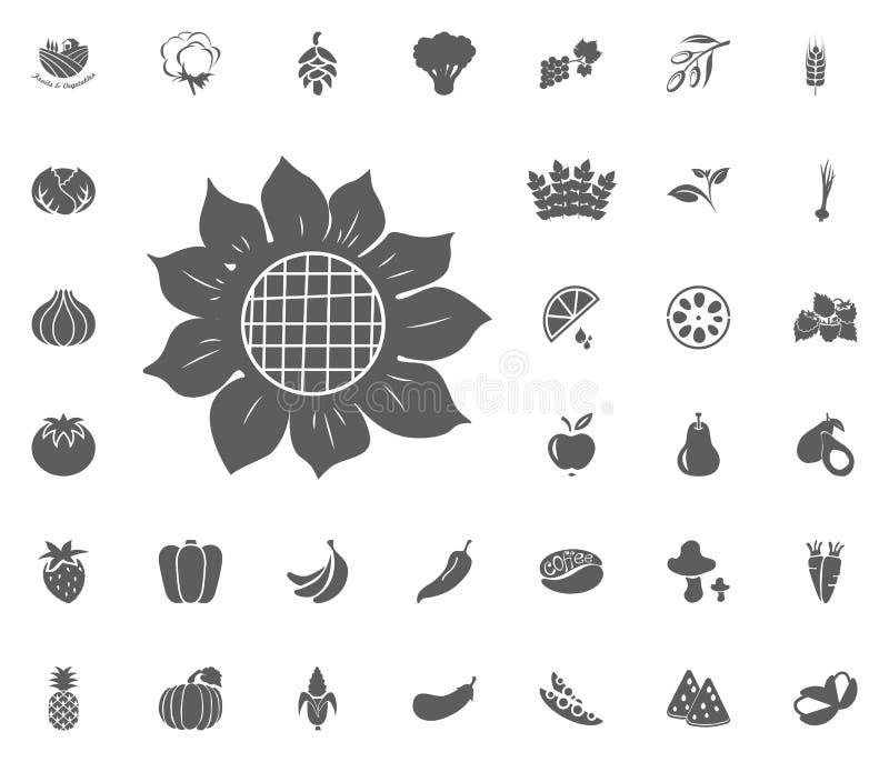 Ícone do girassol Grupo do ícone da ilustração do vetor das frutas e legumes símbolos do alimento e da planta ilustração royalty free
