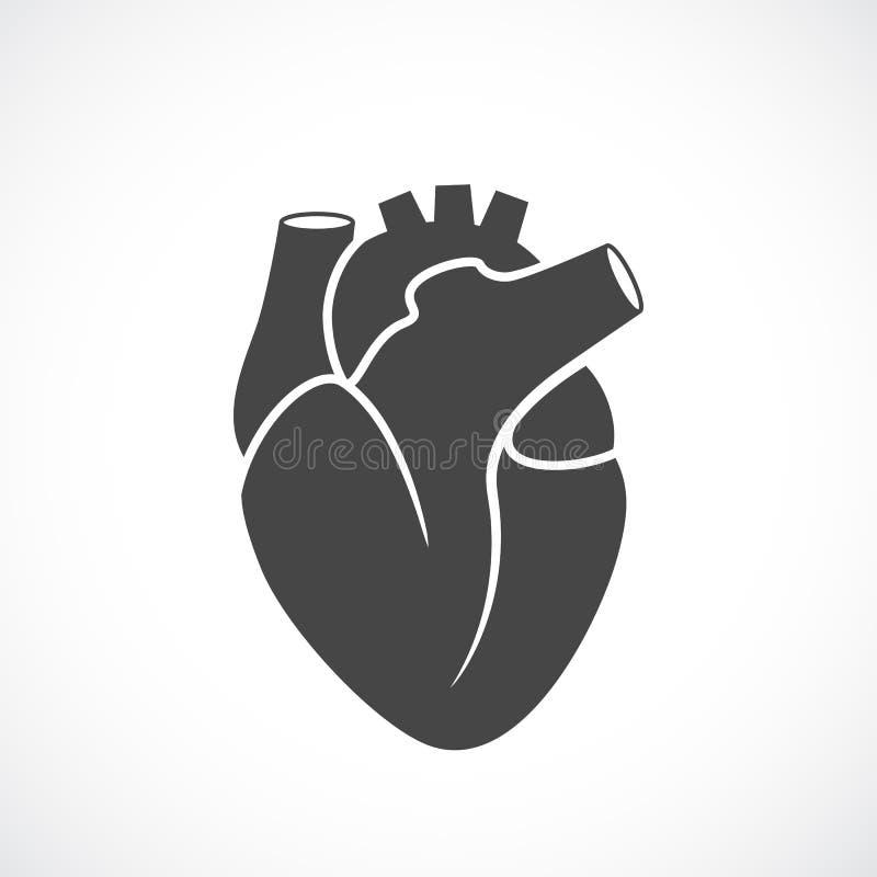 Ícone do vetor do órgão humano do coração ilustração stock
