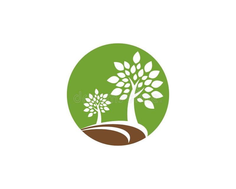 Ícone do vetor da árvore ilustração stock