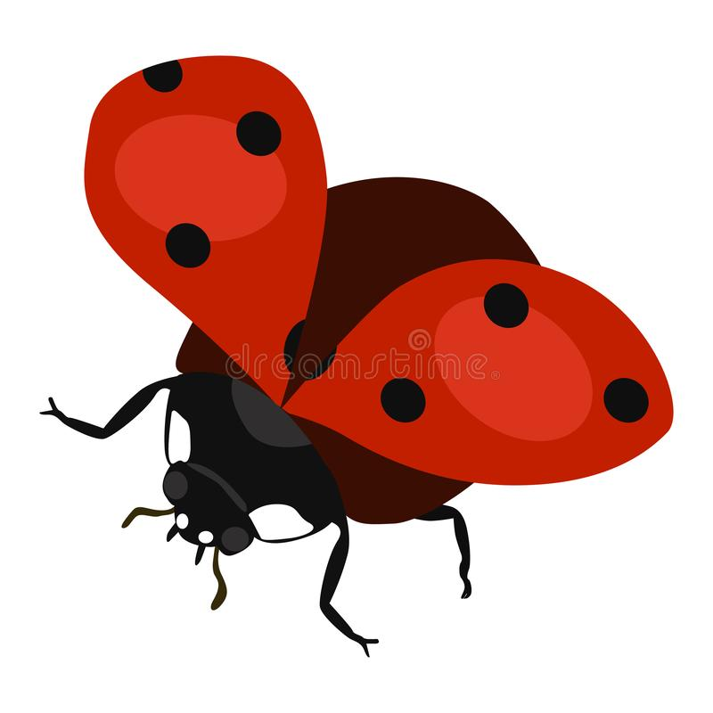 Ícone do vetor do voo da joaninha em um fundo branco Ilustração do inseto isolada no branco Projeto realístico do estilo do besou ilustração stock