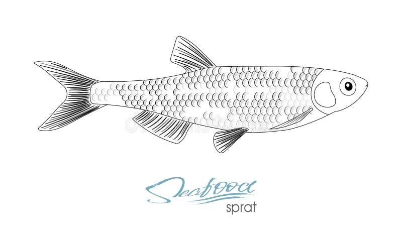 Ícone dos peixes do vetor do esboço do arenque pequeno Arenques pequenos marinhos isolados de Oceano Atlântico Peixes de mar line ilustração royalty free