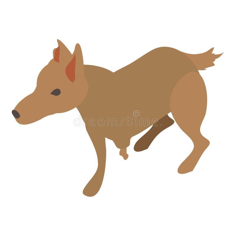 Ícone ferido do cão, estilo 3d isométrico ilustração royalty free
