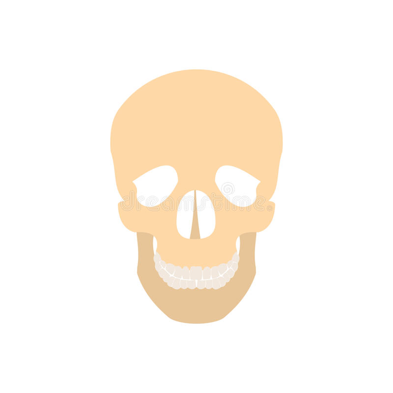 Ícone humano do crânio ilustração do vetor