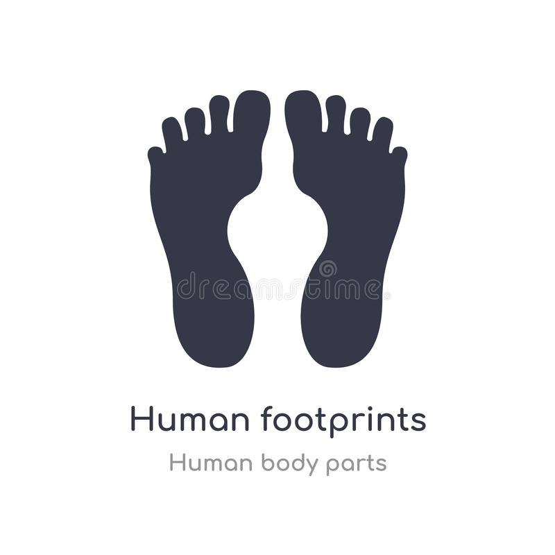 ícone humano do esboço das pegadas linha isolada ilustração do vetor da coleção humana das partes do corpo ser humano fino editáv ilustração stock