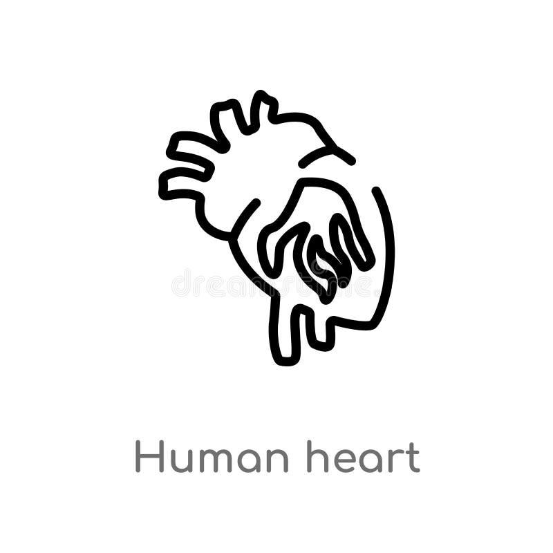 ícone humano do vetor do coração do esboço linha simples preta isolada ilustração do elemento do conceito humano das partes do co ilustração do vetor