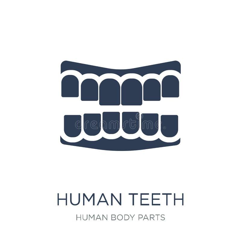 ícone humano dos dentes Ícone humano dos dentes do vetor liso na moda em b branco ilustração royalty free