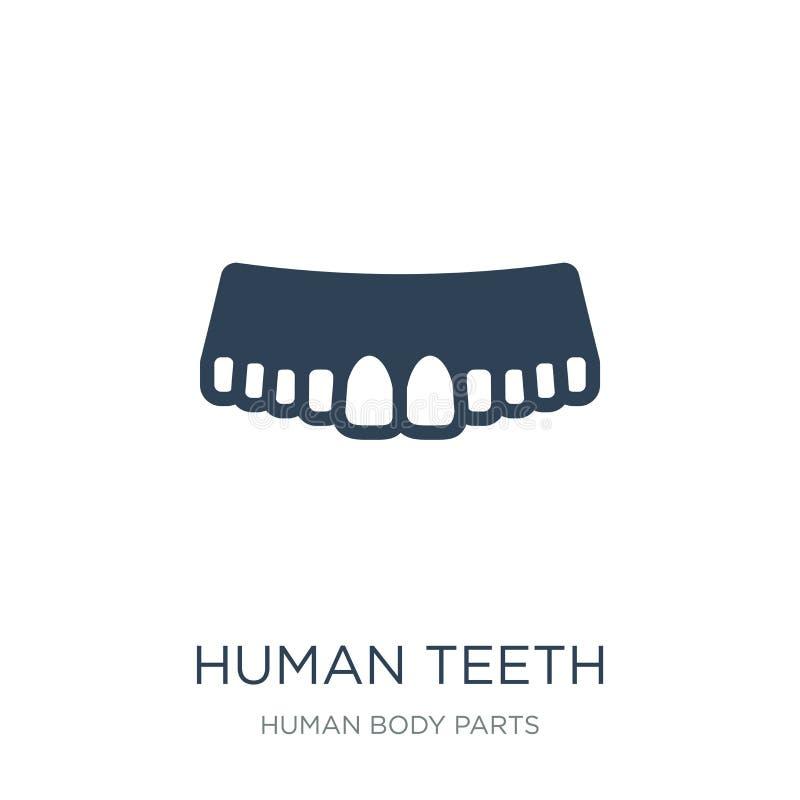 ícone humano dos dentes no estilo na moda do projeto Ícone humano dos dentes isolado no fundo branco ícone humano do vetor dos de ilustração stock