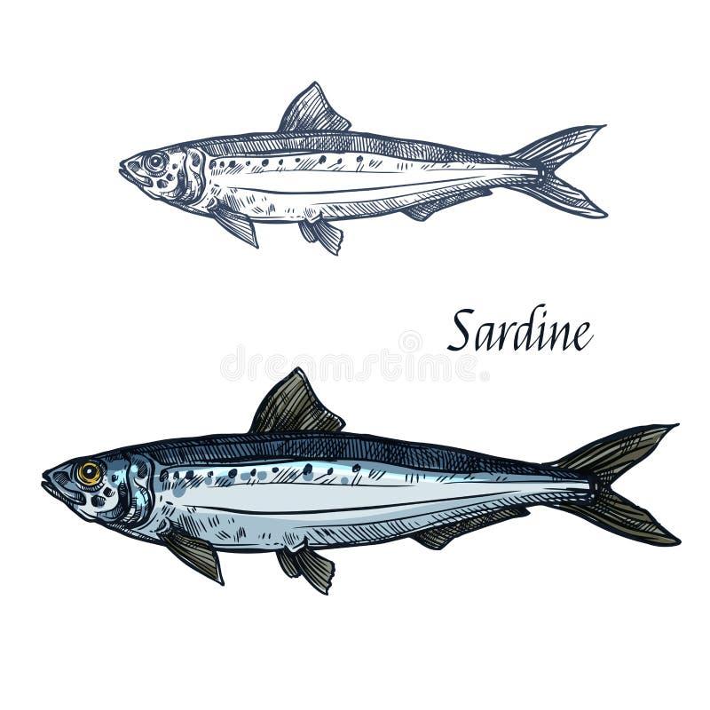 Ícone isolado vetor do esboço dos peixes da sardinha ilustração royalty free