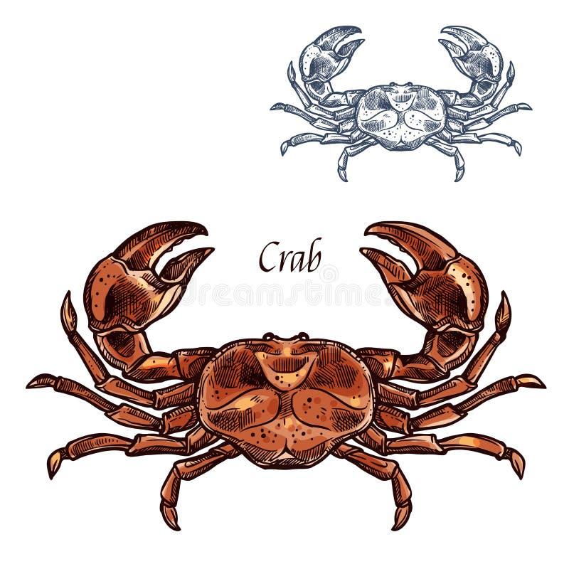 Ícone isolado vetor do esboço do marisco da lagosta do caranguejo ilustração stock