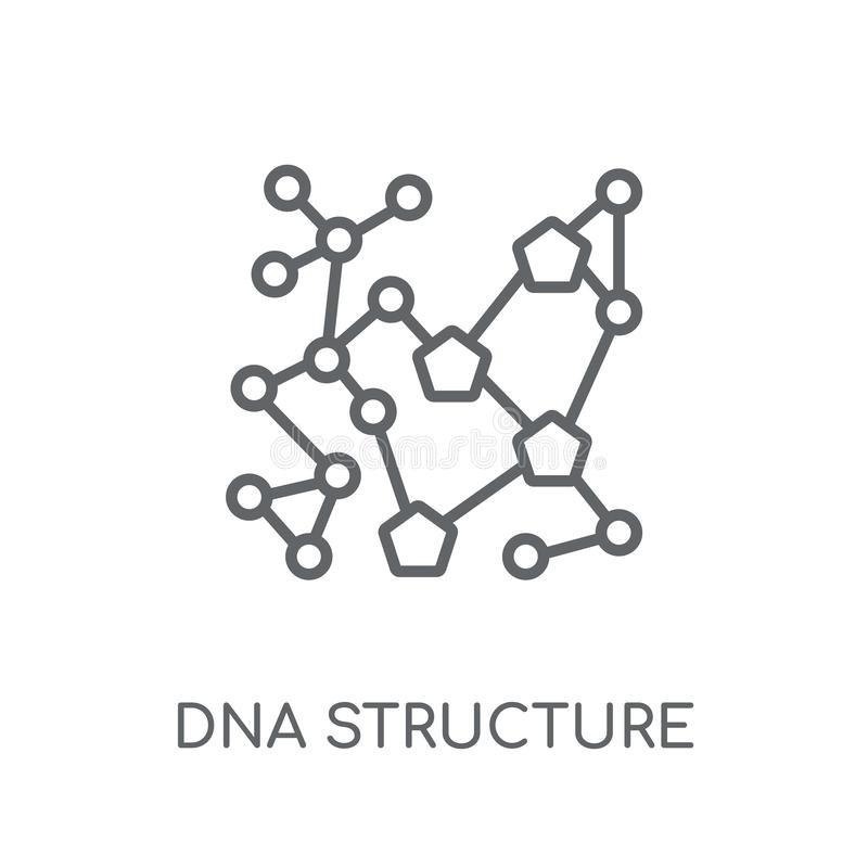 Ícone linear da estrutura do ADN Engodo moderno do logotipo da estrutura do ADN do esboço ilustração stock