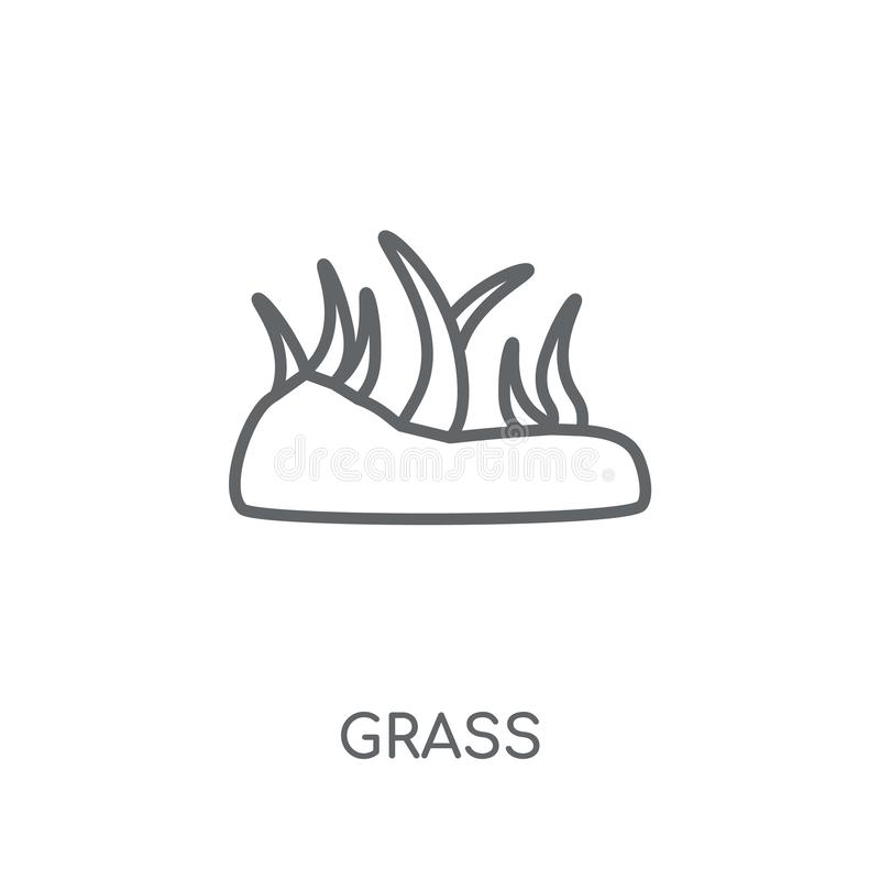 Ícone linear da grama Conceito moderno do logotipo da grama do esboço nos vagabundos brancos ilustração do vetor