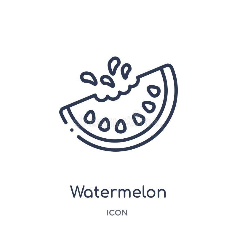 Ícone linear da melancia da coleção do esboço dos frutos Linha fina ícone da melancia isolado no fundo branco melancia na moda ilustração do vetor