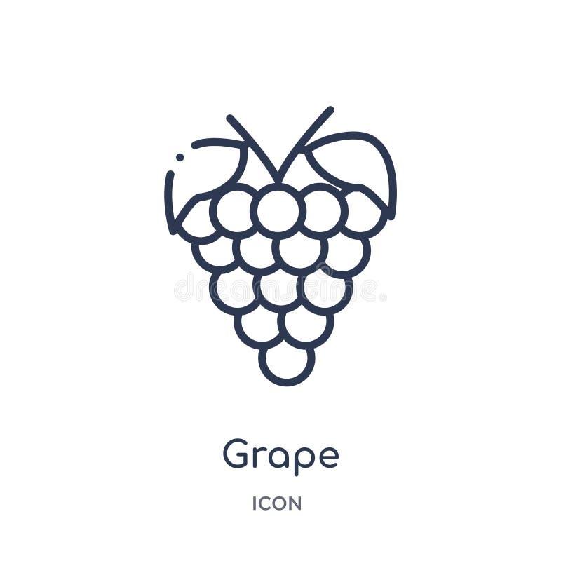 Ícone linear da uva da coleção do esboço dos frutos Linha fina ícone da uva isolado no fundo branco ilustração na moda da uva ilustração stock