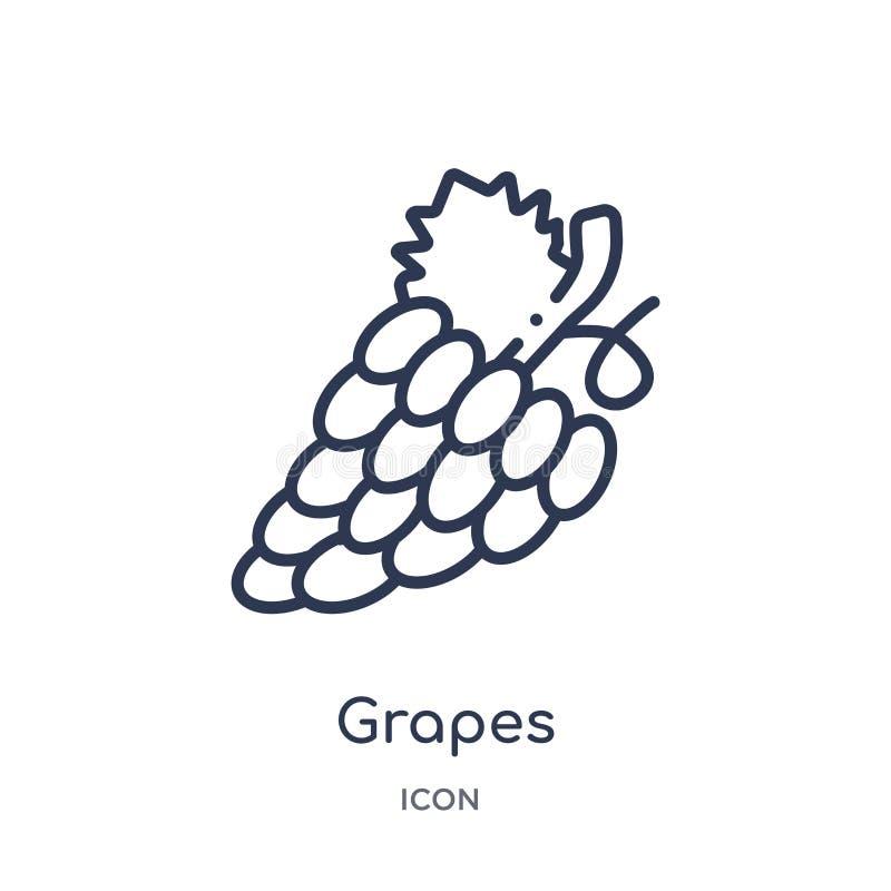 Ícone linear das uvas da coleção do esboço dos frutos Linha fina ícone das uvas isolado no fundo branco ilustração na moda das uv ilustração stock