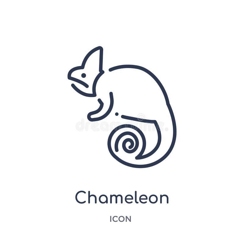 Ícone linear do camaleão da coleção do esboço dos animais Linha fina ícone do camaleão isolado no fundo branco camaleão na moda ilustração do vetor