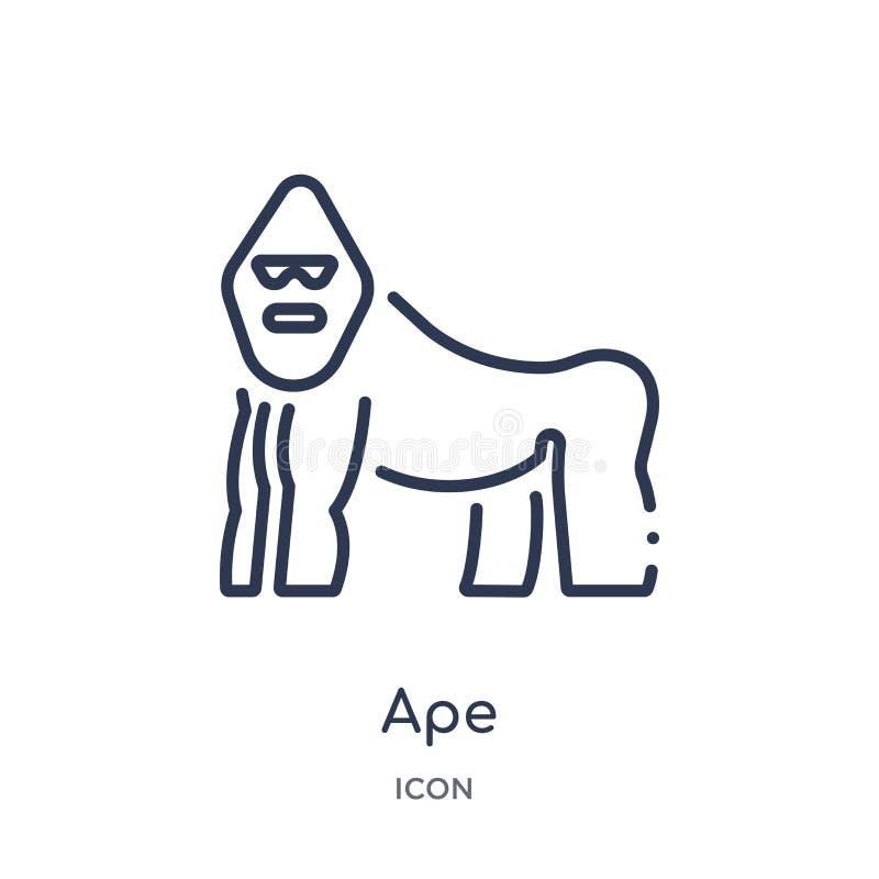 Ícone linear do macaco dos animais e da coleção do esboço dos animais selvagens Linha fina vetor do macaco isolado no fundo branc ilustração stock