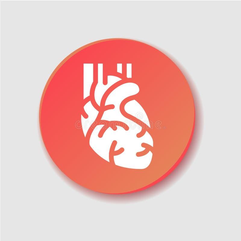 Ícone liso do coração humano Clipart do vetor, ilustração, molde ilustração do vetor