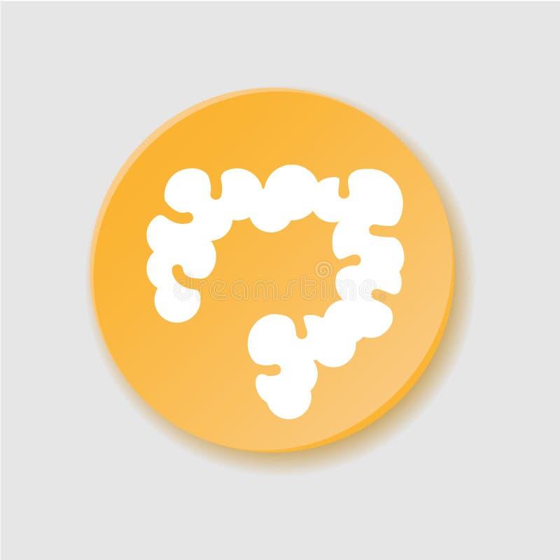Ícone liso do grande intestino Trato digestivo, duodeno ilustração stock