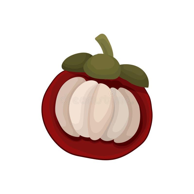 Ícone liso do vetor do meio mangustão Fruto maduro da árvore tropical Alimento delicioso e saudável Elemento para o suco ilustração do vetor