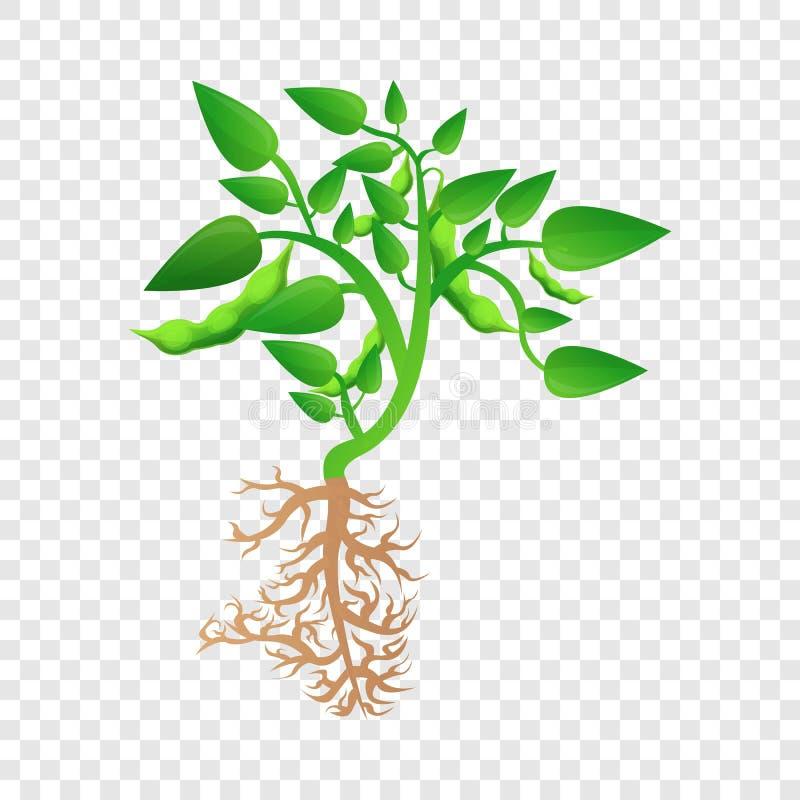 Ícone maduro da planta de feijão de soja, estilo dos desenhos animados ilustração do vetor