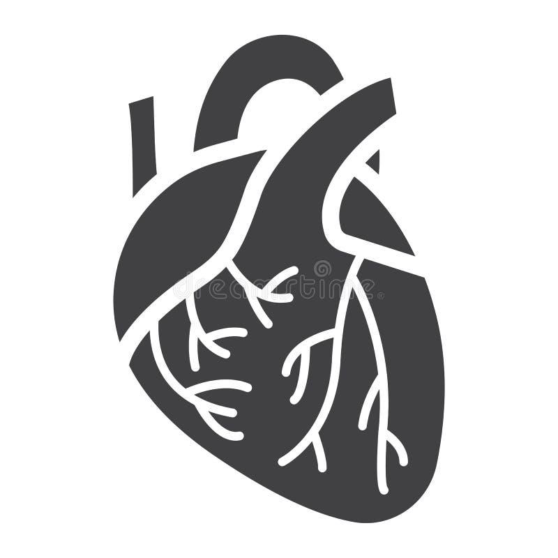 Ícone, medicina e cuidados médicos humanos do glyph do coração ilustração do vetor