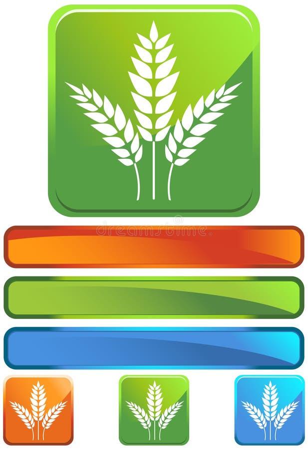 Ícone quadrado verde - grão ilustração stock