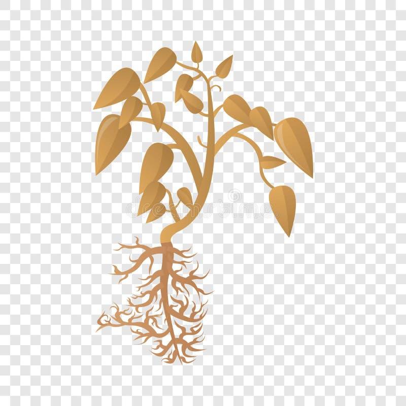 Ícone seco da planta do feijão de soja, estilo dos desenhos animados ilustração do vetor