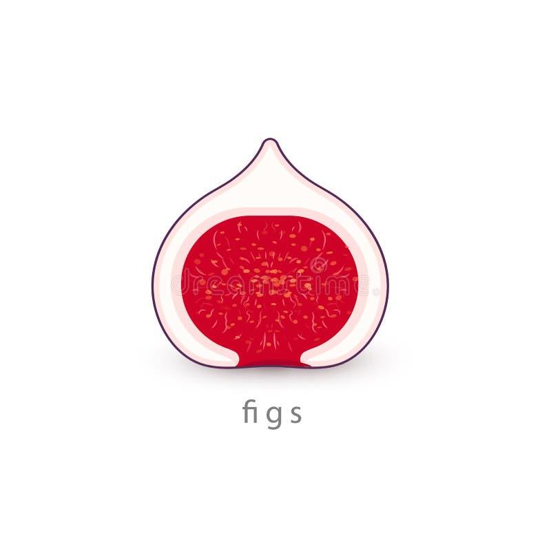 Ícone simples dos figos Molde do logotipo do vegetariano, estilo do minimalismo Meia ilustração do vetor do fruto do arbusto no f ilustração stock