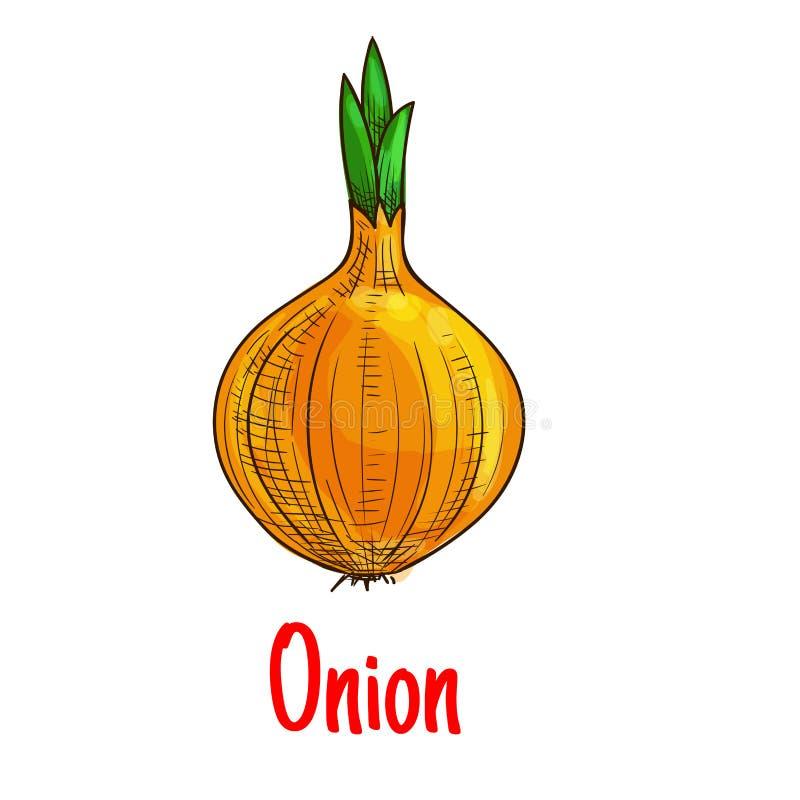 Ícone vegetal do esboço da cebola do bulbo ilustração stock