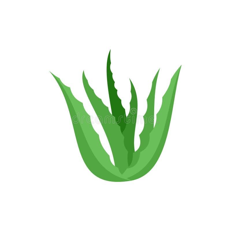 Ícone verde de vera do aloés, estilo liso ilustração royalty free