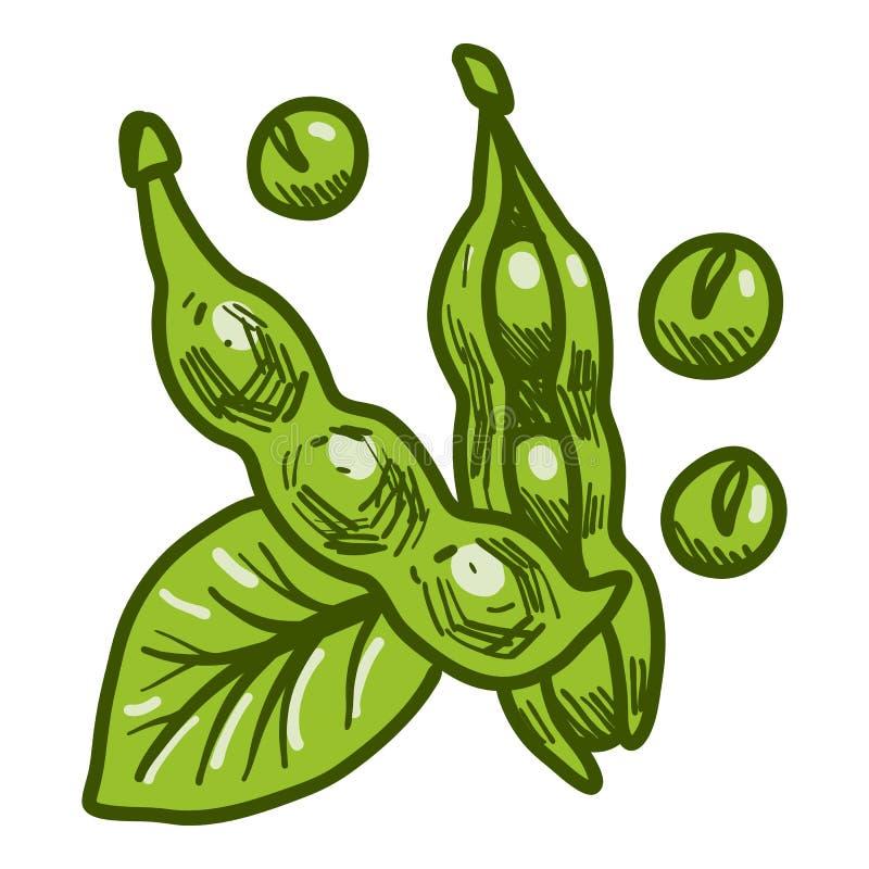 Ícone verde do feijão de soja do eco, estilo tirado mão ilustração royalty free
