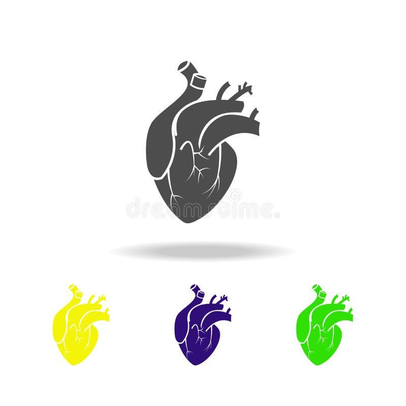 ícones coloridos de um órgão do coração Elemento de ícones coloridos das partes do corpo Sinais e ícone para Web site, Web de da  ilustração royalty free