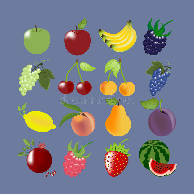 Ícones da fruta ajustados ilustração stock