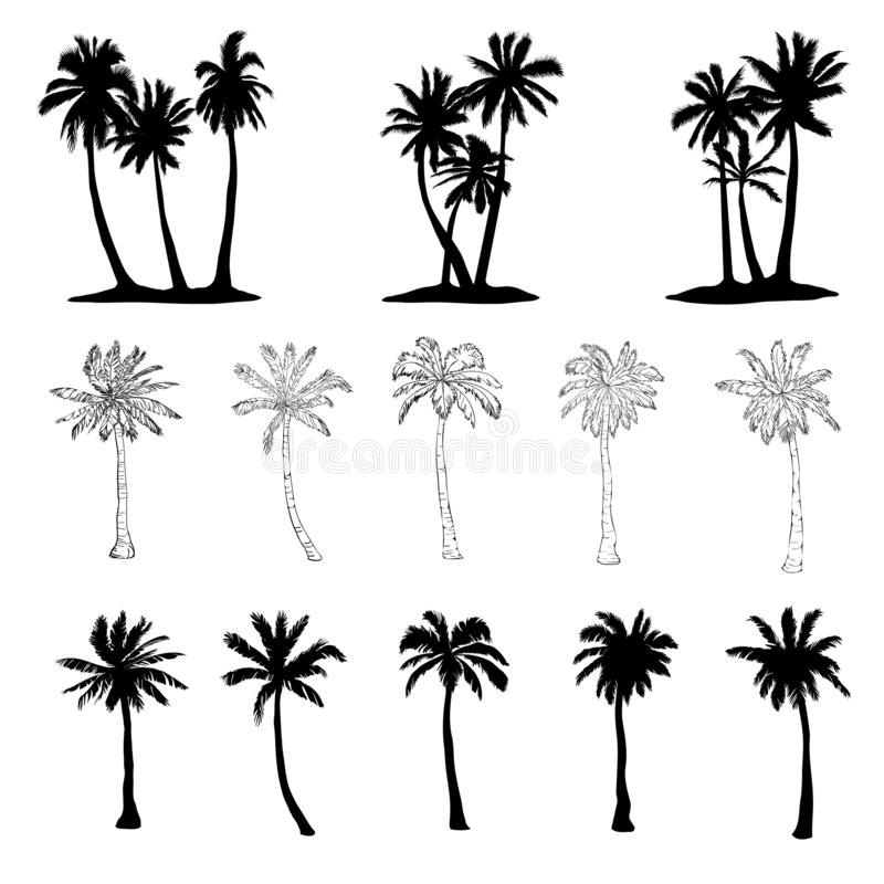 ícones da silhueta da palmeira do vetor no fundo branco ilustração do vetor