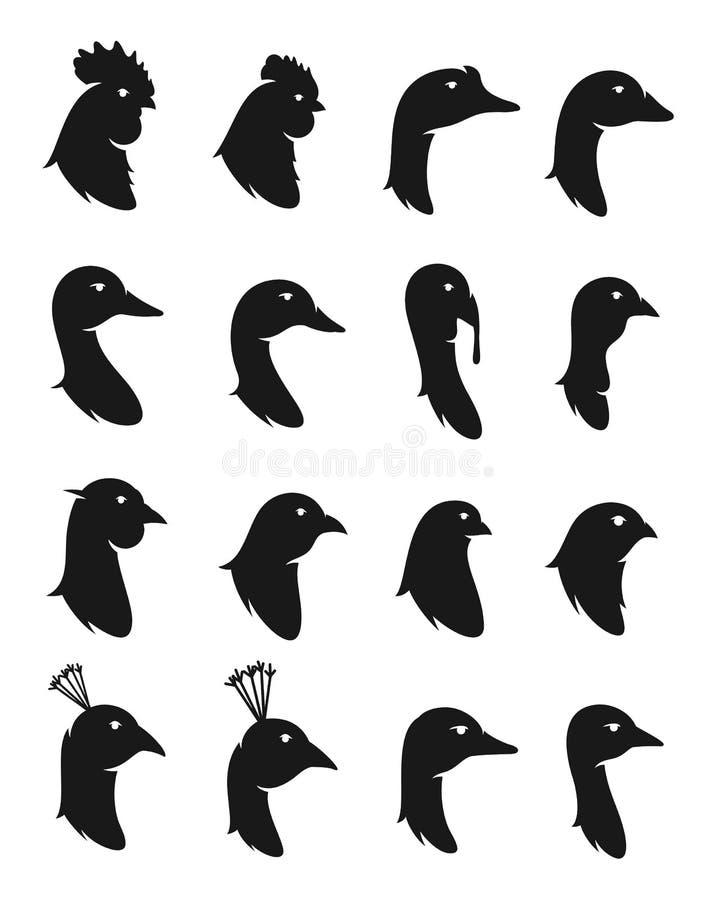 Ícones das aves domésticas do vetor isolados no branco ilustração stock