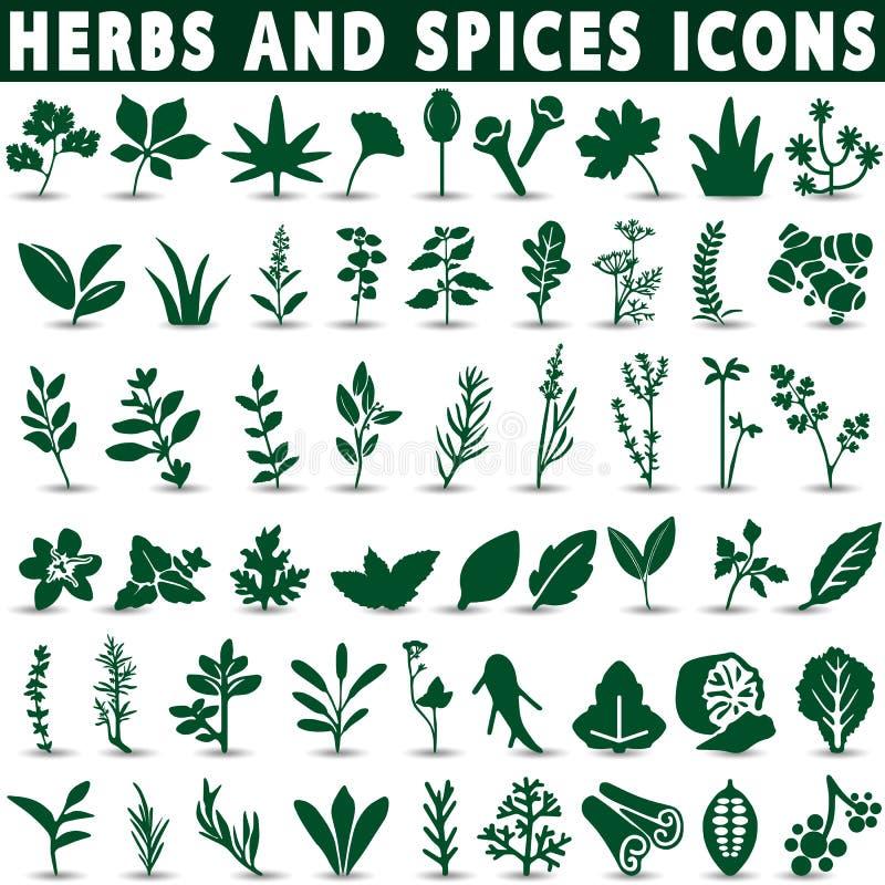 ícones das ervas e das especiarias ilustração royalty free