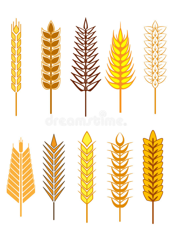 Ícones das orelhas do cereal ajustados ilustração stock