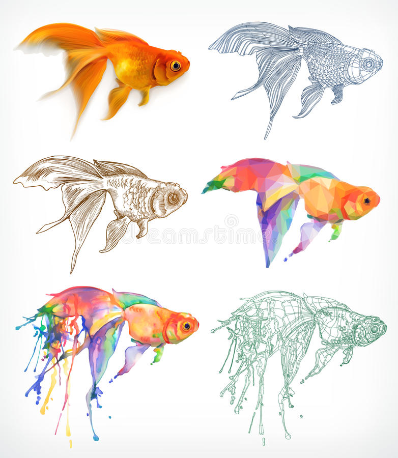 Ícones do desenho do peixe dourado ilustração do vetor