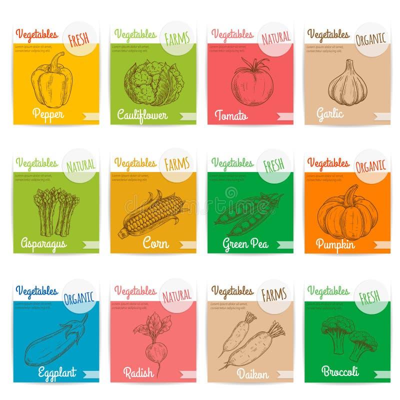 Ícones do esboço do vetor dos vegetais com nomes ilustração stock