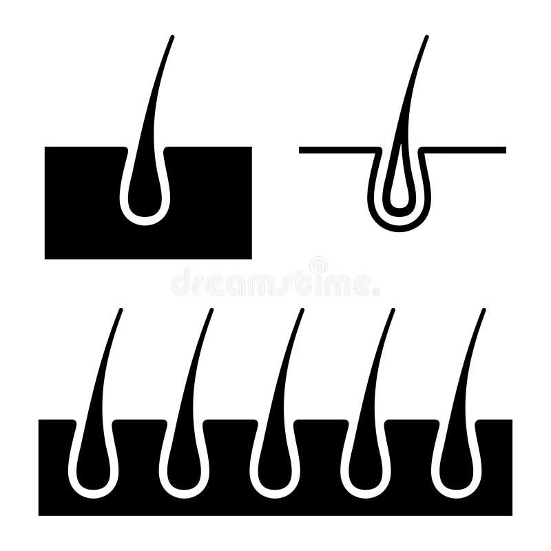 Ícones do folículo de cabelo ajustados Vetor ilustração do vetor