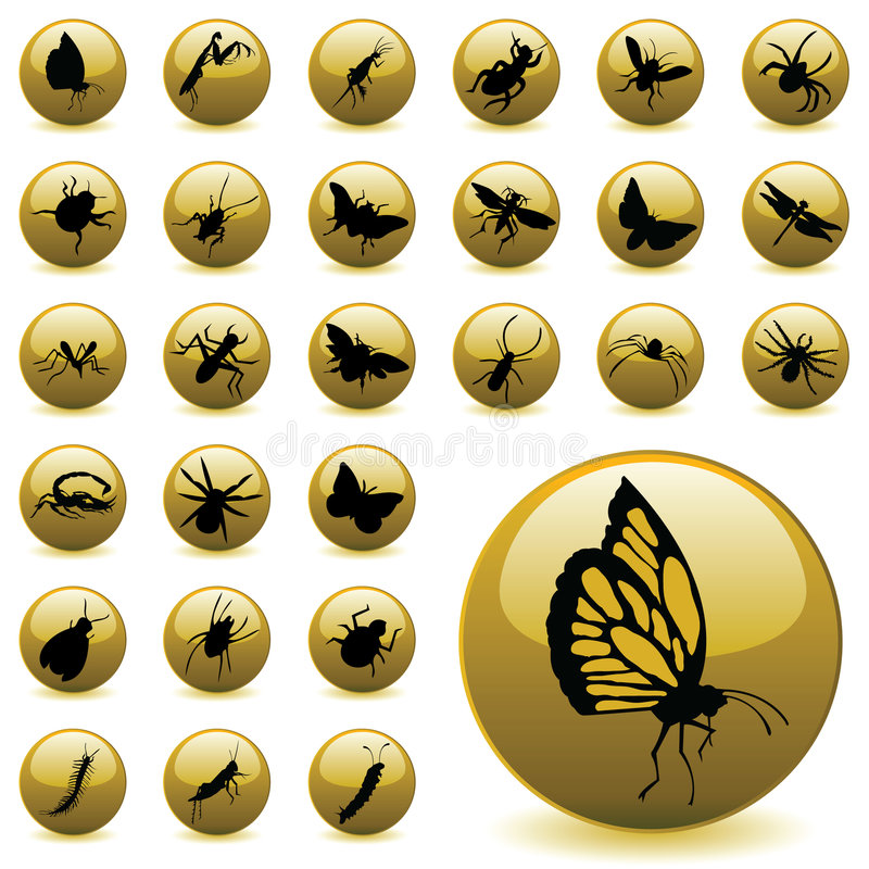 Ícones do inseto ilustração do vetor