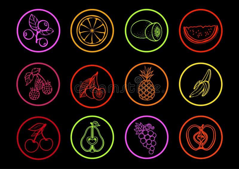 Ícones do vetor do fruto Frutos e bagas dos ícones coloridos brilhantes ajustados do contorno vários em um quadro redondo em um f ilustração do vetor