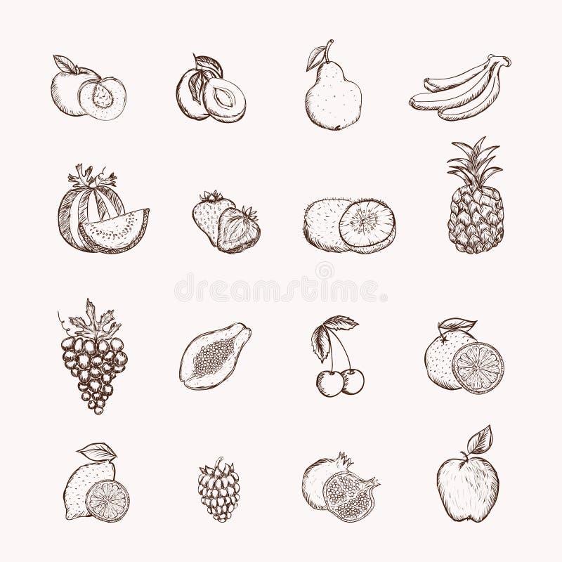 Ícones dos frutos ajustados ilustração do vetor