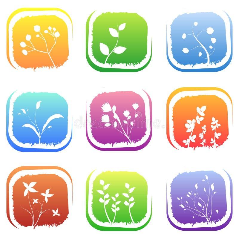 Ícones florais ilustração stock